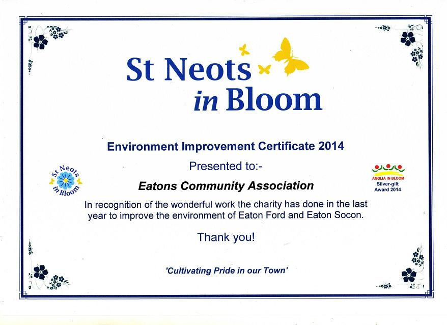 In Bloom Award